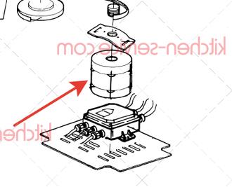 Мотор RIC-MOT-19 PASQUINI для PSP 700 15 кг (№18)