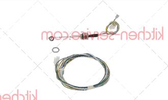 87.01.219 Электрод уровня воды 175 мм с кабелем SCC, SCC_WE, CM 201G
